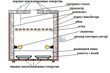 Инкубатор своими руками и схемы 5